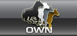Own A Virtual Race Horse